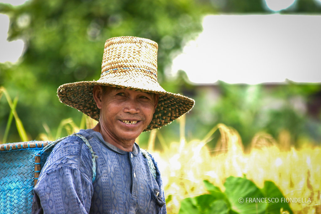 Rice Farmer, Indonesia