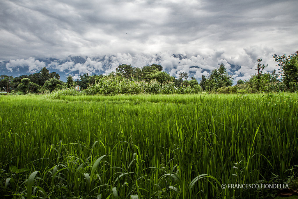 Amtrar Village in Himachal Pradesh, India