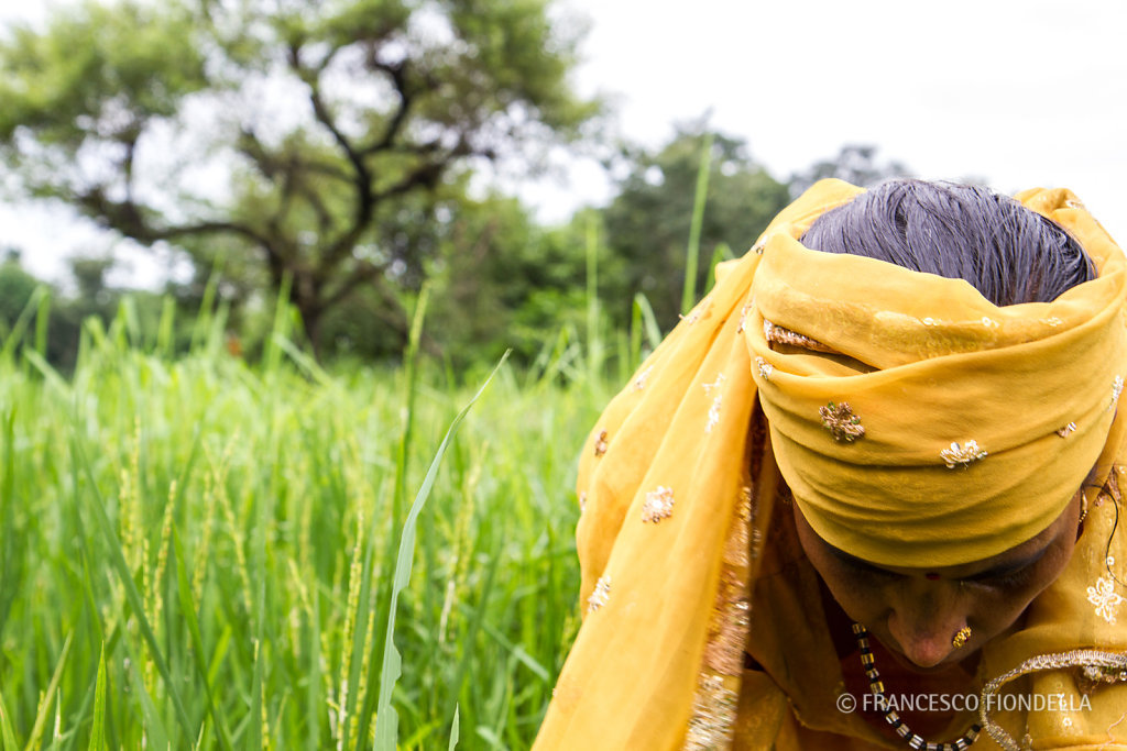 Manorama Devi in her field